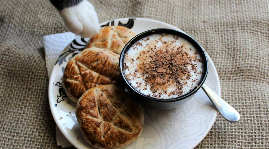 Gluten Free Chai Cookie Recipe