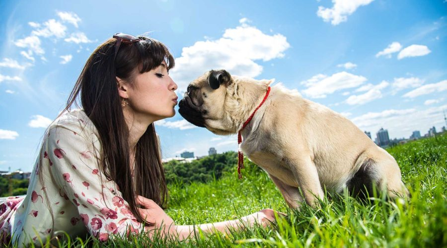 10 Ways Your Dog Makes You a Better Person